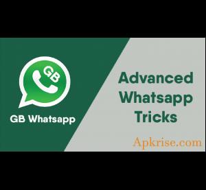 GB WhatsApp Pro Apk Free Download with Hide Blue Ticks, Make Group, Change Theme 5